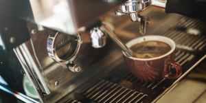 attractive bar barista breakfast